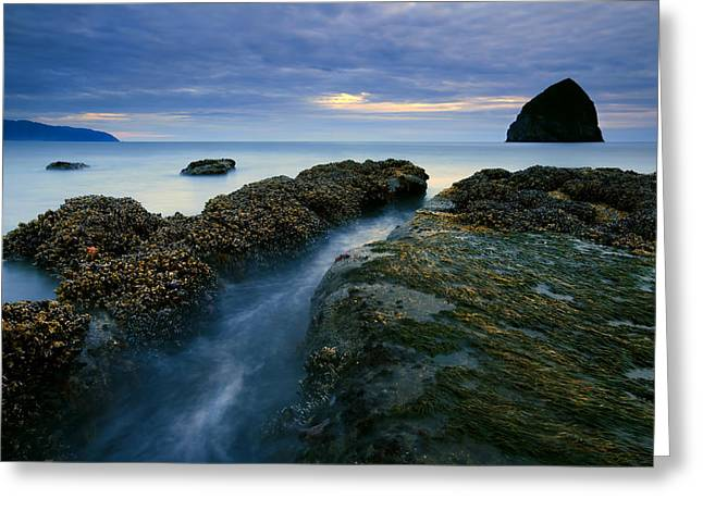 Dusk At Kiwanda  Greeting Card by Mike  Dawson