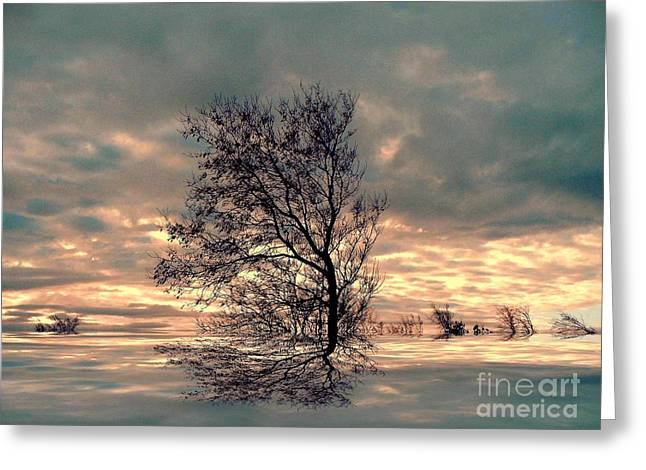 Greeting Card featuring the photograph Dusk by Elfriede Fulda