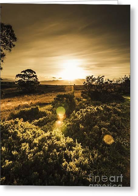 Dusk In Rural Australia Greeting Card