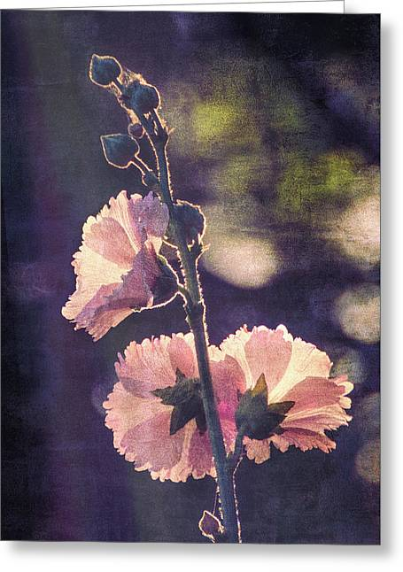 Greeting Card featuring the mixed media Dusk Light by Ike Krieger