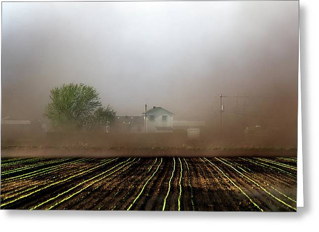 Dust Storm Greeting Card