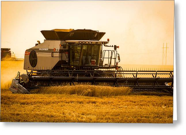 Dusty Harvest Greeting Card