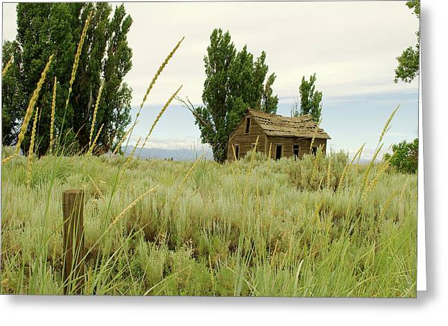 Dyer Country Home Greeting Card