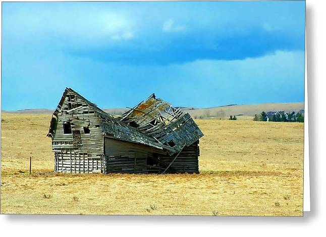 Dying Old Barn Greeting Card by Mario Brenes Simon