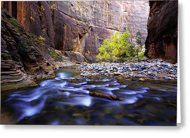 Dynamic Zion Greeting Card by Chad Dutson