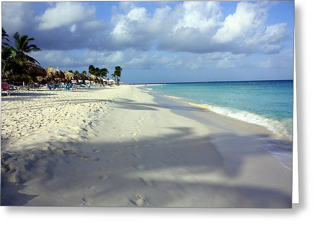 Eagle Beach Aruba Greeting Card