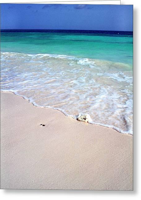 Eagle Beach Greeting Card by Thomas R Fletcher