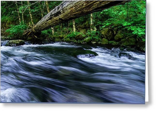 Eagle Creek Rapids Greeting Card