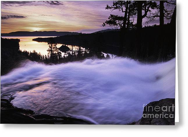 Eagle Falls Morning Greeting Card by Buck Forester