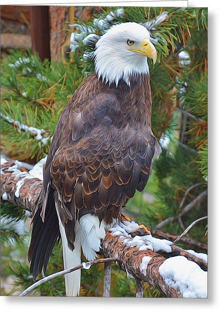 Eagle Glory Greeting Card
