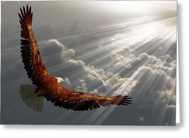 Eagle In Flight Above The Clouds Greeting Card by Bruce Rolff