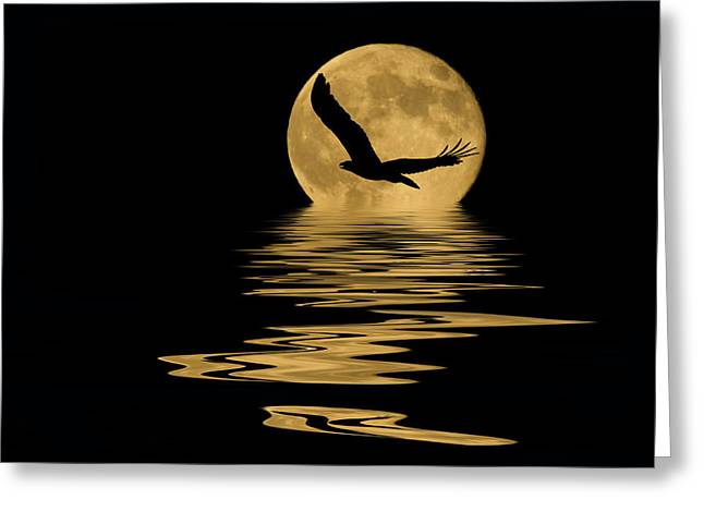 Eagle In The Moonlight Greeting Card by Shane Bechler