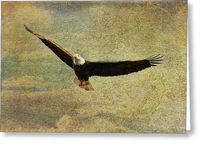 Eagles Mixed Media Greeting Cards - Eagle Medicine Greeting Card by Deborah Benoit