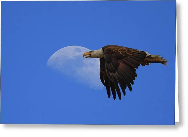 Eagle Moon Greeting Card