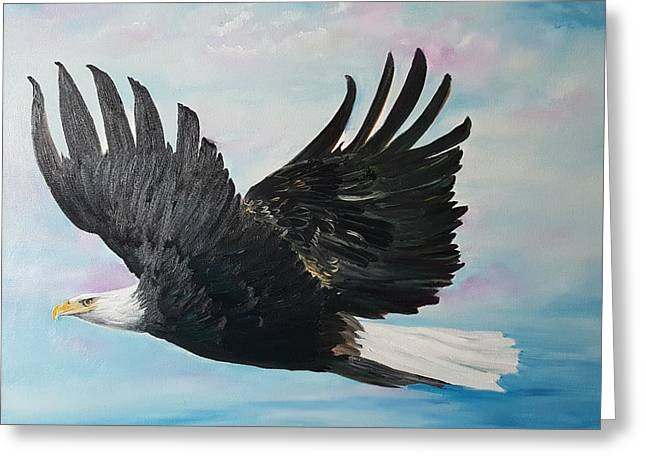 Eagle On A Mission      11 Greeting Card
