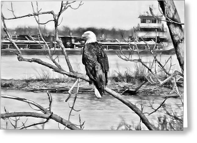 Eagle On The Illinois River Greeting Card