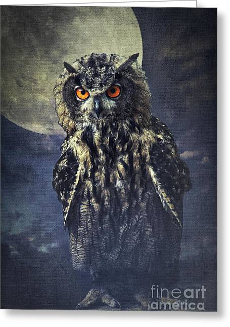 Eagle Owl Greeting Card by Angela Doelling AD DESIGN Photo and PhotoArt