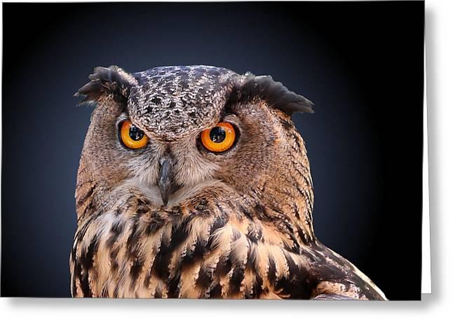 Eagle Owl Greeting Card