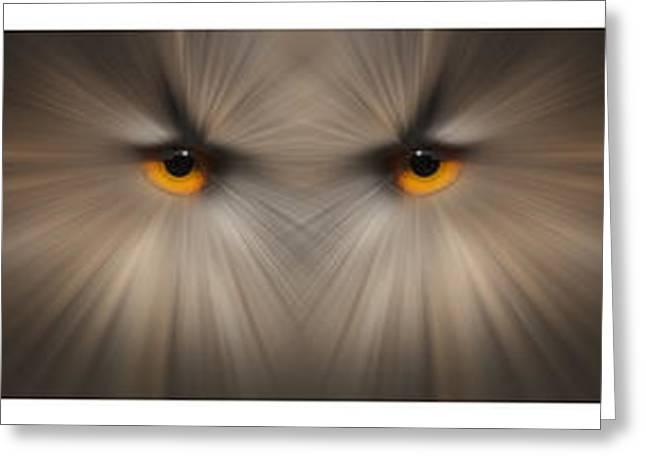 Eagle Owl Eye Triptych Greeting Card