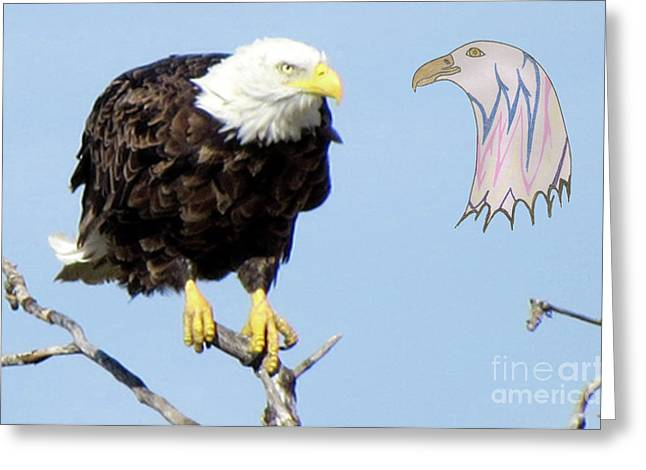 Eagle Reflection Greeting Card