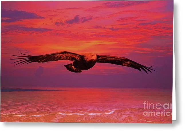 Eagle Sundown Greeting Card by Deborah Benoit