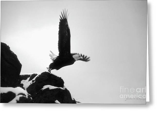 Eagle Takeoff At Adak, Alaska Greeting Card