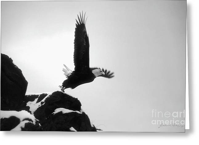 Eagle Takeoff At Adak, Alaska Greeting Card