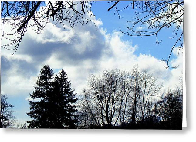 Eagles Nest In Faraway Tree Greeting Card by Lisa Rose Musselwhite