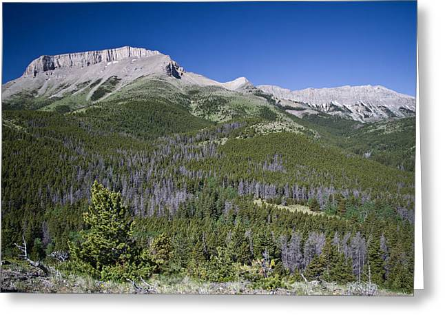 Ear Mountain, Montana Greeting Card