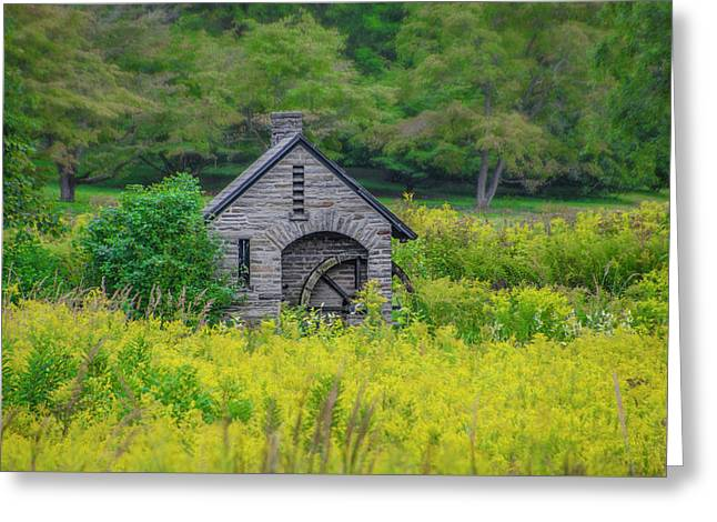 Early Autumn At Morris Arboretum Greeting Card by Bill Cannon