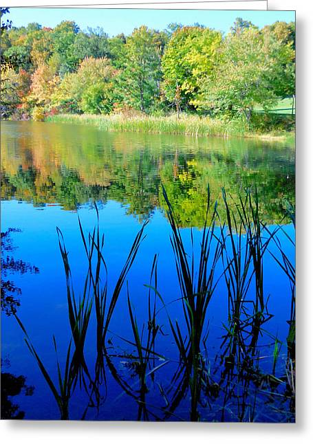 Early Autumn Color  6 Greeting Card by Lanjee Chee