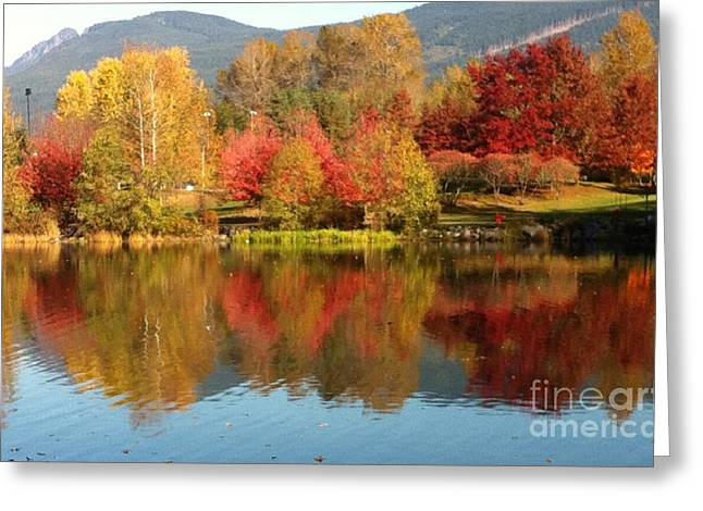 Early Fall At Lafarge Lake Greeting Card by Rod Jellison