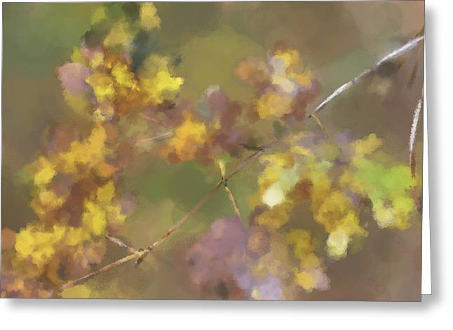Early Fall Leaves Greeting Card