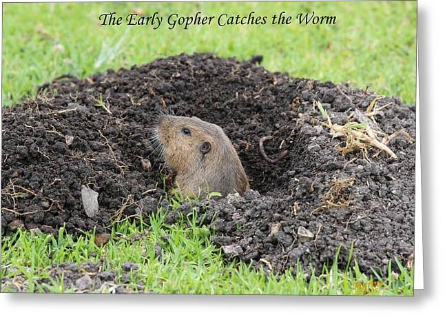 Early Gopher Catches The Worm Greeting Card