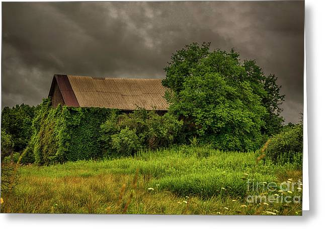 Early Monring Rain Greeting Card by JRP Photography