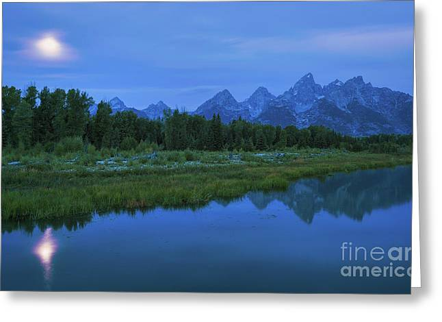 Greeting Card featuring the photograph Early Morning Along The Snake River by Sharon Seaward