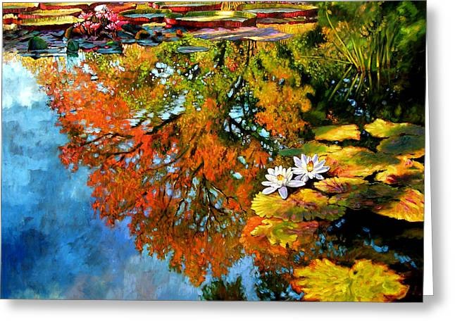 Early Morning Fall Colors Greeting Card by John Lautermilch