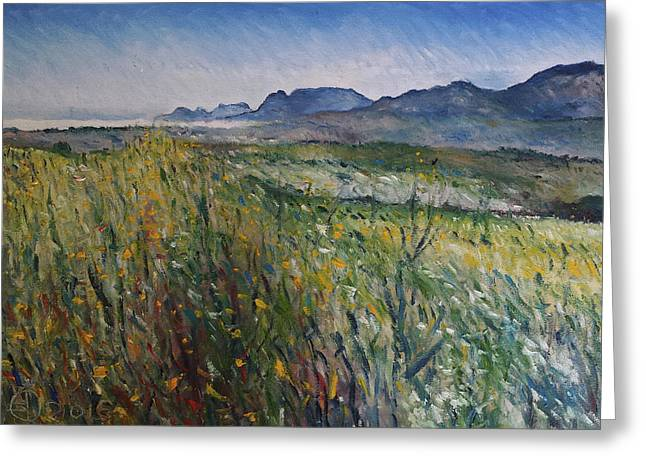 Early Morning Fog In The Foothills Of The Overberg Range Of Mountains Near Heidelberg South Africa. Greeting Card by Enver Larney
