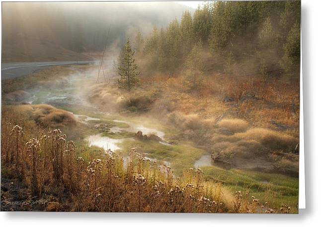 Early Morning Fog Yellowstone Np Greeting Card