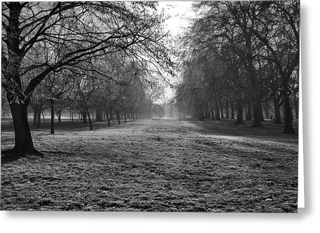 Early Morning In Hyde Park 16x20 Greeting Card