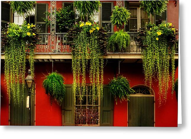 Early Morning In New Orleans Greeting Card