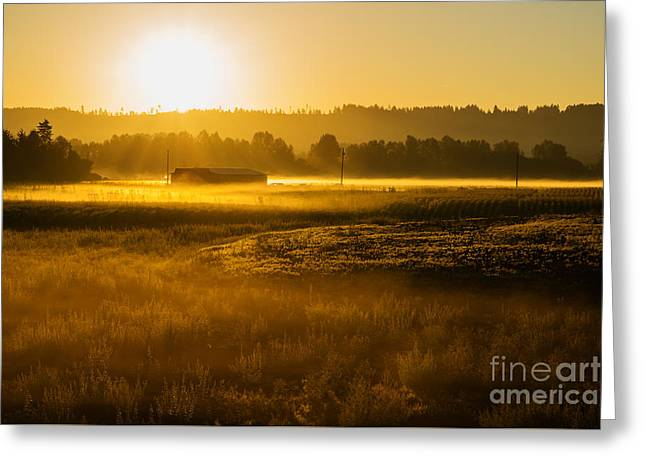 Early Morning In The Valley Greeting Card by MaryJane Armstrong