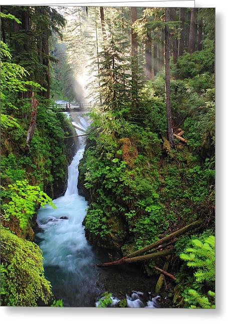 Sol Greeting Cards - Early morning light at Sol duc waterfall in Olympic National park Greeting Card by Pierre Leclerc Photography