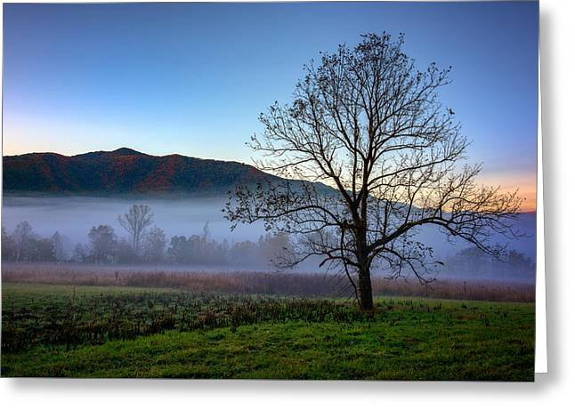 Early Morning Mist In Cades Cove Greeting Card by Rick Berk