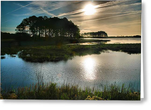 Best Sellers -  - Wildlife Refuge. Greeting Cards - Early Morning On Beach Drive II Greeting Card by Steven Ainsworth