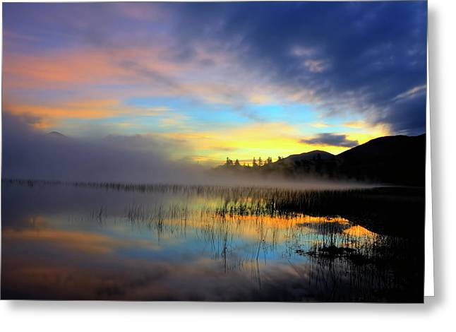 Early Morning On Connery Pond Greeting Card by Tony Beaver