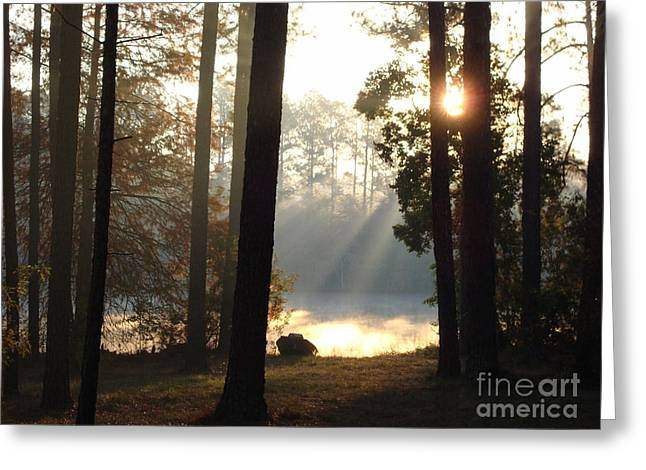 Early Morning Sun Rays On The Lake Greeting Card by Cindy Hudson