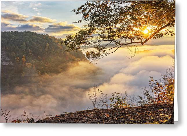 Early Morning Sunrise At Letchworth State Par Greeting Card