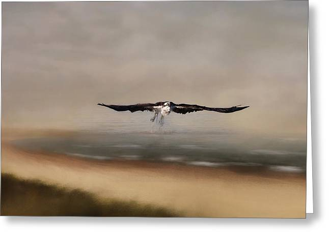 Greeting Card featuring the photograph Early Morning Takeoff by Kim Hojnacki