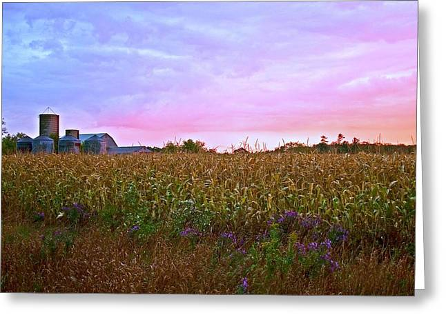 Early October Sky Over Corn Field Greeting Card